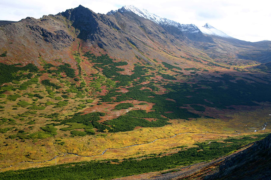 Powerline Pass at Chugach State Park